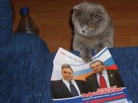 Мой мегокот тоже голосовал