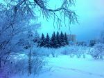 Зима в Пущино.