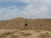 На Фоне Каменистой Сахары