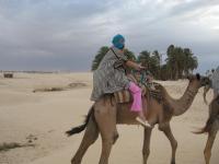 В Сахаре На Верблюдах